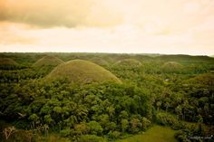 Chocolate Hills is a geological curiosity of Bohol Island in the Philippines. Hundreds of conical monds between 30 and 50 meters high are scattered in a 50 km² area. These domes were formed 2 millions years ago by the uplift of shells and coral. From shells to titties to chocolate, filipinos have a good sense of humour!