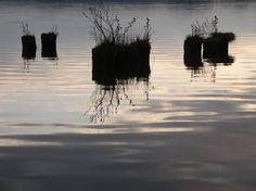 Schwerelos am Klein Köriser See