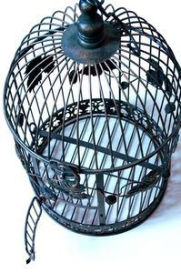 I love the idea of turning a beautiful old bird cage into a light fitting- espeically painted a bright color!