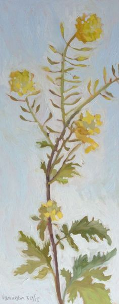 Rapeseed flowers have become one of my favourite flowers to paint and grow profusely in Umbria.  I painted this one morning using the natural light that comes into my studio.  I think this painti...