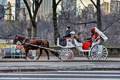 Would love to go on a horse and carriage ride Central Park!