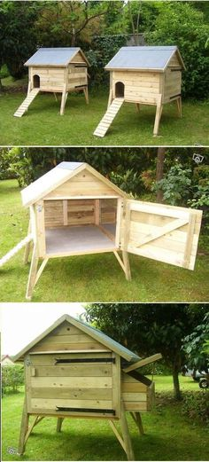 Building a chicken coop does not have to be tricky nor does it have to set you back a ton of scratch.