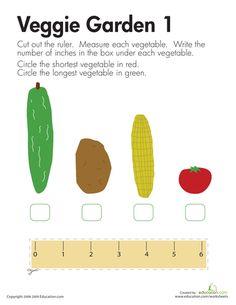 Exploring Measurement   Printable Workbook   Education.com