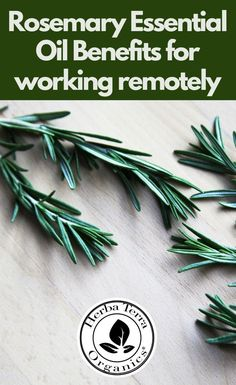 Essential oils like Rosemary can help to improve cognition, performance, and memory. Rosemary Oil effectively excites the senses, sharpening one's focus, and supporting remembrance; for this reason, it can be especially useful for virtual work conferences or meetings where remembering relevant details is critical. Tap the Image for more info.  #herbaterraorganics #organicoils #rosemaryoil Helichrysum Essential Oil, Clary Sage Essential Oil, Sweet Orange Essential Oil, Frankincense Essential Oil, Lemongrass Essential Oil, Essential Oil Uses, Essential Oils For Memory, Aromatherapy Recipes, Organic Oil