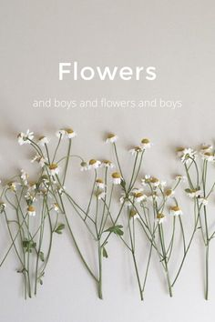 Flowers and boys and flowers and boys Me and Audrey, on the same page.. And... I think that's what life is all about, actually, about children and flowers Audrey Hepburn #stellerverse flowers and Ethan flowers and Ryan flowers and Eddie flowers and Joseph