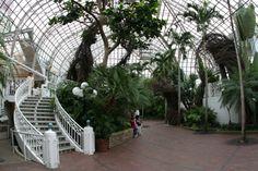 Interior of Franklin Park Conservatory