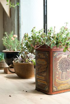 Eclectic vessels make a charming statement.