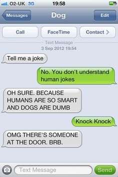 "If dogs could text.. :: xLaurieClarkex~ ""knock knock"" ""OMG there's someone at the door brb"" lots of other funnies on this page too :-) bored panda.com"