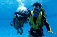 Mutley, the Scuba Diving Dog