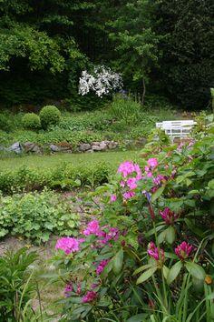 A view in my garden. Lindas trädgårdsblogg