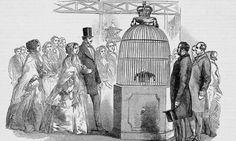 Queen Victoria and Prince Albert  viewing the Koh-I-Noor.