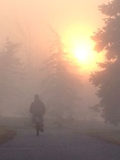 Bike in the fog Carving, Bike, Celestial, Sunset, Pictures, Outdoor, Bicycle, Sunsets, Photos
