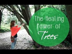 The Healing Power of Trees | Annika Garratt