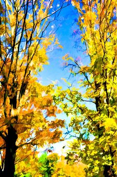 Nice colorful leafs on the beautiful blue sky by Jeelan Clark Fall Trees, Sky Painting, Coupon, Leaves, Birds, Wall Art, Nice, Beautiful, Bird