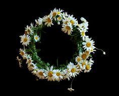 Une couronne de fleures