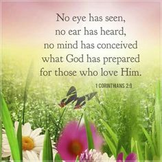No eye has seen love quotes god flowers faith bible buttefly Biblical Quotes, Religious Quotes, Bible Verses Quotes, Bible Scriptures, Spiritual Quotes, Bible Quotations, Spiritual Encouragement, Scripture Art, Prayer Quotes
