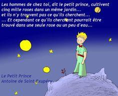 Le petit prince à dit ...