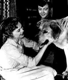 Dorothy McGuire in Old Yeller