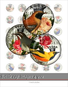 Fabulous birds - Digital Collage Sheet 1 inch circle images for bottle caps, Pendants, Paper craft, Scrapbook