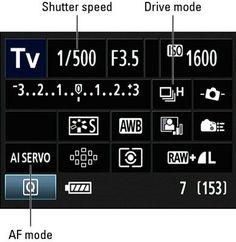 Canon 60D Action Shots!