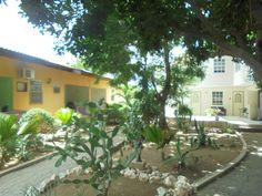 Zicht op de binnentuin Happy Turtle Apartments Curacao Happy Turtle, Plants, Plant, Planets