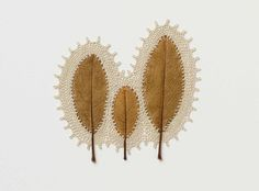 crochet art dried leaves -Susanna Bauer describes the delicate leaf and crochet sculptures Freeform Crochet, Crochet Art, Crocheted Lace, Dry Leaf Art, Art Environnemental, Crochet Leaves, Crochet Flowers, Magnolia Leaves, Colossal Art