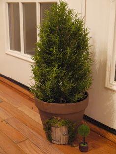 fairy door on plant pot