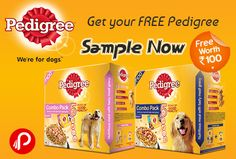 Wer4pets offers freebie offer, Dog Food FREE 100Rs. worth Pedigree Sample. #paisebachao #FreeSample #Pedigree http://www.paisebachaoindia.com/get-a-dog-food-free-100rs-worth-pedigree-sample-pedigree/