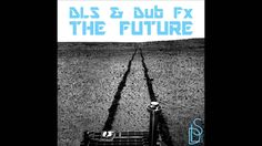 Dub Fx - Fly With Me (DLS Remix)