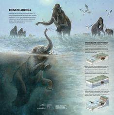 National Geographic Russia Fernando Baptista