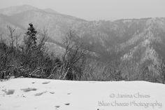 Blue Cheeze Photography: A Trip to Ruidoso! #ruidoso #newmexico #snow #photography