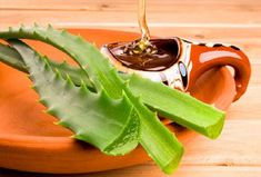 """Aloe vera gel has been called as """"Planet of life"""" and """"Miracle plant"""". Aloe vera gel has been used as herbal. Como Tomar Aloe Vera, Home Remedies For Pimples, Nutrition, Asthma, Natural Medicine, Kraut, Diabetes, Natural Remedies, Natural Treatments"""