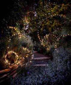Outdoor Tree Lighting, Outdoor Fairy Lights, Outdoor Trees, Backyard Lighting, Outdoor Gardens, Lighting For Gardens, Lights In Backyard, Garden Lighting Ideas, Outdoor Tree Decorations