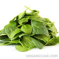 The Hidden Wonders of Spinach