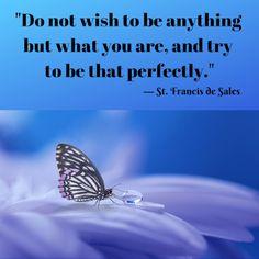 Francis de Sales — Be Yourself Organizational Development Consultant, Monday Morning Motivation, Bus Driver, St Francis, Beautiful Butterflies, Haiku, Short Stories, Nonfiction, Kisses