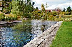 Garden Bridge, Garden Path, Outdoor Recreation, Water Features, Garden Inspiration, Paths, Pond, Sidewalk, Outdoor Structures