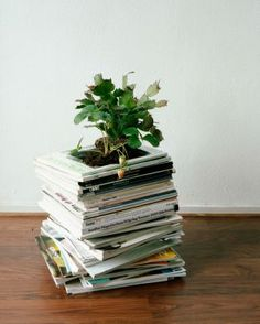 cut holes inside of a stack of magazines.  place a pot inside.  hidden planting!