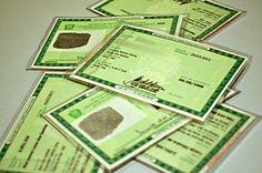 A partir de fevereiro, carteira de identidade pode ser solicitada pela internet Blog, Personalized Items, Internet, Personal Identity, Id Wallet, Moving Out, Names, Recipes, February