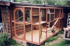 Outdoor Cat Play Area: for Laurel& cats! Cat Habitat, Outdoor Cat Enclosure, Rabbit Enclosure, Cat Playground, Outdoor Cats, Outdoor Play, Cat Room, Cat Condo, Space Cat