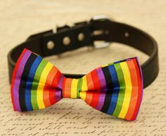 Rainbow dog bow tie collar, Colorful, dog lovers, Wedding pet accessory, Gift