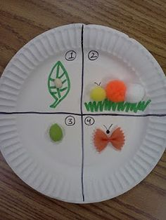 For scinece skills. . . Very Hungry Caterpillar paper plate activity to aid in teaching the life cycle of a caterpillar
