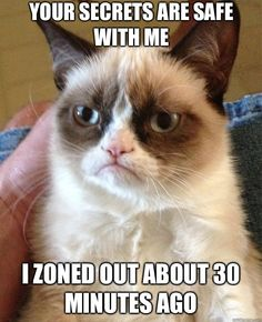 Grumpy Cat - Your secrets are safe with me I zoned out about 30 minutes a