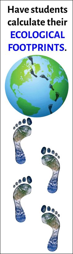This great activity has students using an online ecological footprint generator to help them analyze how their lifestyle choices have an implact on their ecological footprint. In this activity they analyze their own footprint, the footprint of the most s Science Lessons, Science Activities, Life Science, Science Books, Earth And Space Science, Science And Nature, Sustainability Education, Ap Environmental Science, Ap Human Geography