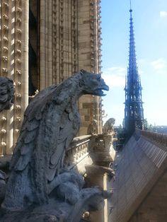 Gothic gargoyles on the Notre Dame Notre Dame Gargoyles, Gothic Gargoyles, Statue Of Liberty, Lion Sculpture, Santa, Paris, Statue Of Liberty Facts, Montmartre Paris, Paris France