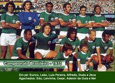 Brasileiro 1973