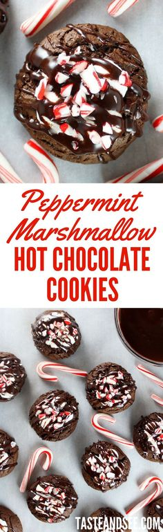 These Peppermint Marshmallow Hot Chocolate Cookies - super easy, delightfully scrumptious and the perfect holiday treat. http://tasteandsee.com
