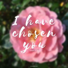 Chosen by God always | scripture | verse | inspirational quote | god's promises | truth | kimtuttle.com | inspirations and encouragement for a God centered home | design organize simplify