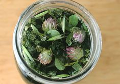 """Nutritive herbs are whole plant-based """"herbal supplements"""" filled with condensed amounts of minerals. When these herbs are infused in hot water, a nutritious phytonutrient-rich bioavailable liquid is created."""