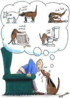 Resultado de imagen para perros chistes