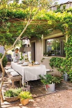 00460752b. Comedor de verano bajo pérgola con cubierta vegetal_00460752b
